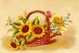 Image result for fall flowers clipart