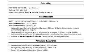 Sample Of Resume For High School Student Directory Resume Sample