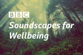 BBC launches music and nature-themed programming as part of 'Soundscapes  for Wellbeing' project - Classical Music