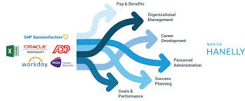 Gm Brand Hierarchy Chart Organizational Charts Software Nakisa