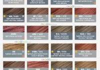 Rational Clairol Professional Hair Color Chart Pdf Clairol