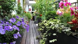 balcony gardens. Image Result For Balcony Gardens