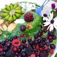 holistic nutrition raw cuisine ibiza