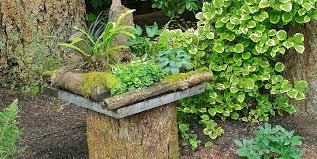 Container Gardening Ideas  Quiet CornerContainer Garden Ideas For Shade