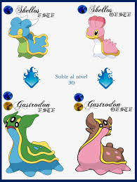 44 Symbolic Pokemon Shellos Evolution