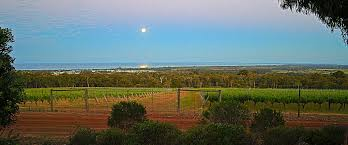 Adinfern Estate Margaret River Wine Region Activities Activities Tours