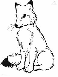 Afbeeldingsresultaat Voor Kleurplaat Koolmees Kleurplaten Fox