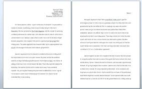 Apa Format 6th Edition Sample Essay Sample Essay Format View Larger