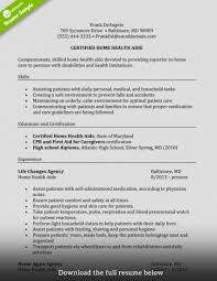 Resume Examples Caregiver