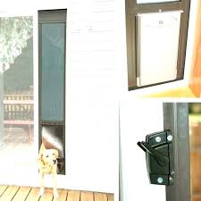 pet door for sliding doors magnificent patio pet door large doggy door sliding glass doors with