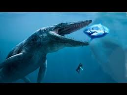real megalodon shark sightings pictures.  Sightings Top 5 Megalodon Sharks Caught On Camera U0026 Spotted In Real Life Video U2013  Covered Truths To Shark Sightings Pictures H