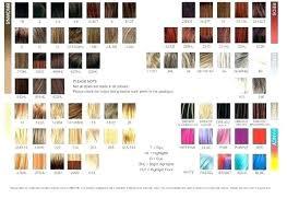 Farouk Chi Hair Color Chart Chi Ionic Hair Color Reviews Lajoshrich Com