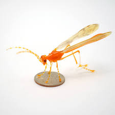 Wesley Fleming: The Birds and The Bees in Glass (February) — Sonoran Glass  School
