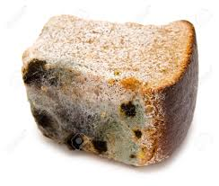 Half A Loaf Of Mouldy Rye Bread Stock Photo Picture And Royalty
