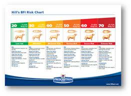 Body Condition Scoring Dogs Bullwrinkles Dog Blog Best