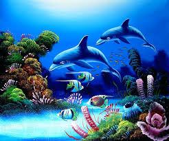 Aquarium Live Wallpaper Free 47 Pictures
