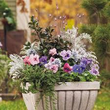 Patio Ideas Patio Gardening Ideas Patio Garden Ideas Uk Small Container Garden Ideas Uk
