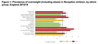 Ethnic Groups In The Uk Child Obesity Strongly Associated With Ethnic Groups