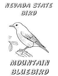 Eastern Bluebird Coloring Page Ideas Animal On Bluebird Of Happiness