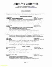Entry Level Flight Attendant Resume Unique Writing A Job Cover