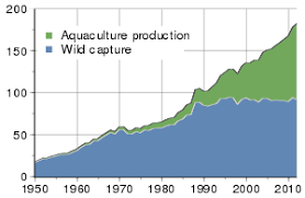 aquaculture global harvest of aquatic organisms in million tonnes 1950 2010 as reported by the fao