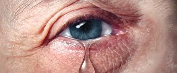 Maltrato de Ancianos: Salir de las Sombras al Centro de Atención de la  Aplicación de la Ley - ACAMS Today