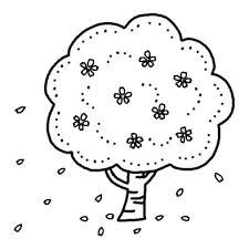 サクラの木サクラ桜春の花無料白黒イラスト素材