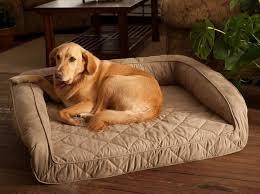 extra large pet beds. Modren Large Extra Large Dog Beds For Mastiffs With Pet
