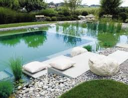 Natural Looking Swimming Pools Pool Filtration System Pond How To
