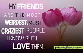 Love My Friends Quotes Extraordinary Love My Friend Quotes My Friends Are The Most Weirdest Most