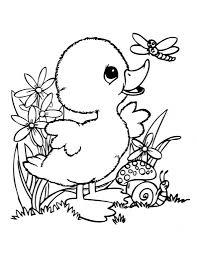 Owl Print Out Coloring Pages L L L L L L Duilawyerlosangeles