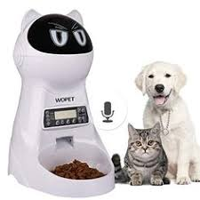 13 Best Automatic Pet Feeder Images In 2019 Pet Feeder