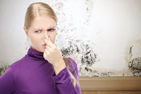 Lovely How To Get Rid Of Musty Smell In House Picture