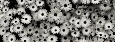 black white facebook cover 2
