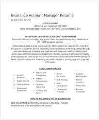 Hmo Administrator Resume Hmo Administrator Resume Best 100 Health Insurance Ideas On 2