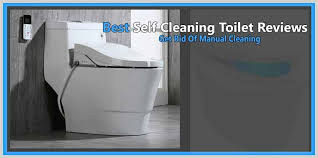 best self cleaning toilet reviews 2020