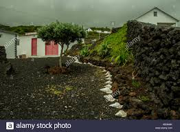 azores islands belong to portugal this is a beautiful garden that someone has photograph with a canon d700 and canon 18 55 lens by david sokulin