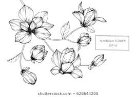 花 おしゃれの画像写真素材ベクター画像 Shutterstock