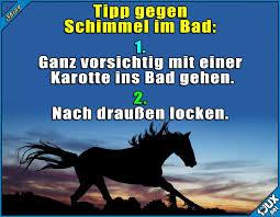 Einfacher Als Gedacht P Wortspiel Pferd Pferde Lustig Witze