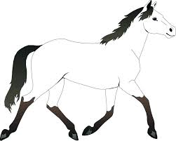 Horse Coloring Pages Princess Cleaning Her Horse Coloring Pages