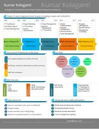 visual resume create by pictocv