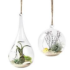 mkono 2 pack glass hanging planter air plant terrarium home decorations for succulent candles globe