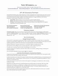 Mba Finance Resume Format For Experience Resume Work Template