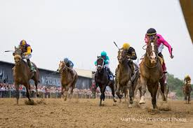 2015 Belmont Stakes Chart Late Running Everfast Plenty Fit For Belmont Bourbon War