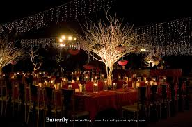 Crystal Chic Fairy Lights Lights Camera Action Butterfly Event Styling