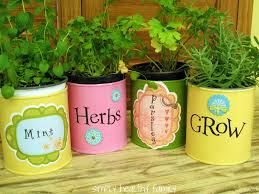 tin can herb container gardens make easy economical gifts the micro gardener