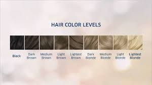 Natural Instincts Creme Color Chart Clairol Natural Instincts Color Chart Hair Coloring