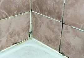 mold in shower caulk remove mold from shower caulk black mold in shower grout how hard