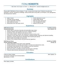 Hub Delivery Driver resume example