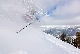 Best Ski Poles Of 2019 2020 Switchback Travel